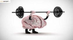 چگونه روانشناس ورزشی در بردن مدال طلا به ورزشکار کمک می کند