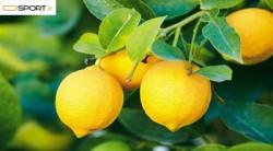چگونه از لیمو در کاهش وزن استفاده کنیم؟
